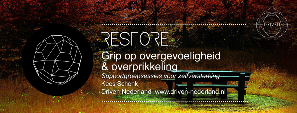 Restore - supportgroep Driven Nederland